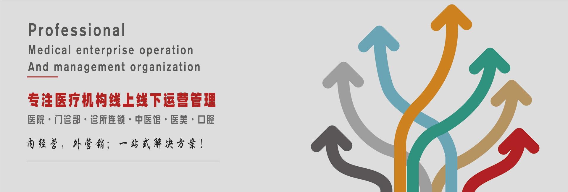 """老鹰科技由中国鹰派联盟十大元老之一""""kingeagle""""创办,为您提供一站式互联网技术服务"""